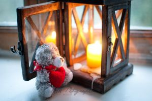 Warm your heart by photosopher