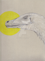 Velociraptor and Sun by sirdiddlysquat