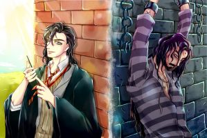 Sirius Black - young and old by Pcat007