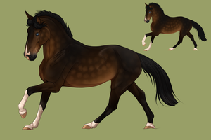 Horse design for @Nightsrunner for a trade by BRls-love-is-MY-Live