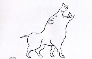 Boar line drawing by santidiablo