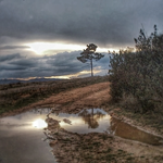 on the way by rioMenor