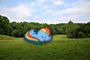 Rainbow Dash napping in a park [GPIRL] by Mcayon