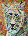 Lioness Portrait Study by lamPkin