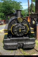 Henry Clay 0-4-0T by Fritzchen-26