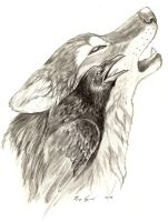 JW Contest -- Raven's Call by Wolfsjal