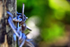 Barb Wire in HDR by ebuisan