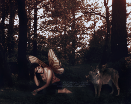 Wings of a butterfly, face of an angel +KSTEW by l4design
