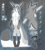 Blair Refrence Sheet by l-Blair-l