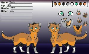 Design For CatmintCats/Cocoa by Starlight201