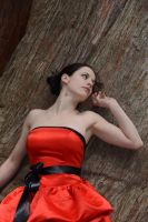 Red Satin Portrait 7 by Anariel-Stock