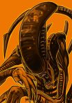 Daily Sketches Alien Xenomorph by fedde