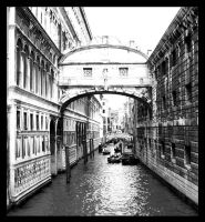 venice street by lose-and-pretend