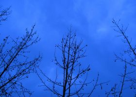 Because the sky is blue, it makes me cry by alesdf