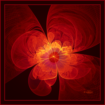 Red Chiffon Flower by baba49