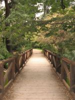 Bridge stock by Henda-Stock