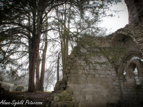 Abbaye de Jumieges V by Sighild