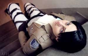 Don't you Heichou me by Colicade