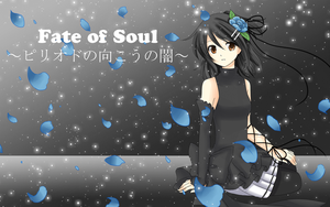 -Fate of Soul- by Na-Nami
