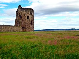 Flint Castle North Wales 3 by friartuck40