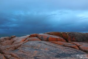 Bay of Fires by FortySixand2Photos