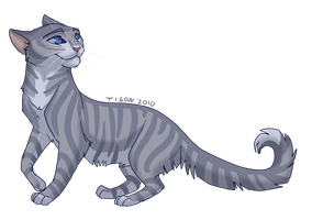 Feathertail by tigon