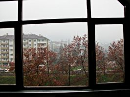 foggy and rainy day by ANDMAiYESi1986