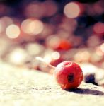 Sour Sweet by myntaphoto