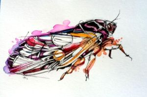 Periodical Cicada by FinchFight