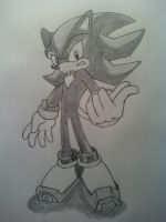 Shadow The Hedgehog by MesophaneGryyn