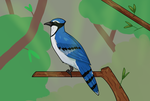 Blue Jay by Lunitidal