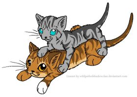 Leafpool and Jayfeather by lucymaggielover