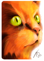 Firepaw - The Warrior Cat by TizianaART