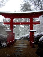 Torii Gate in the snow by irishcompass