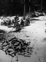 Snow In April 1 by CapnEctoplasm