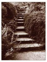stairs by Cornelia1962