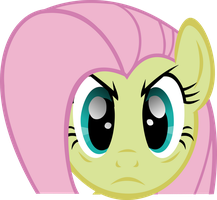 Fluttershy Stare by Triox404