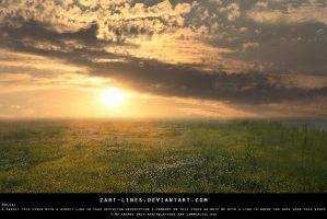 Premade Landscape by zart-lines