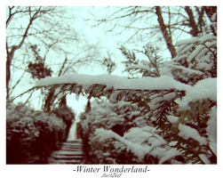Winter Wonderland #4 by justzed