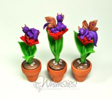 Tulip Dragons by lizzarddesigns