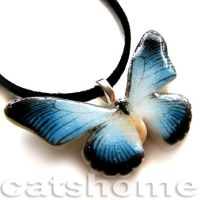 the butterfly collection 6 by catshome