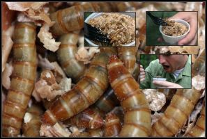 worms, not just for breakfast by zero42