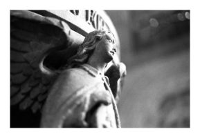 liverpool - angel statue 2 by redux