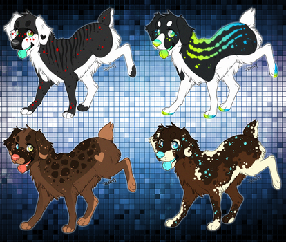Aussie adoptable batch {CLOSED} by DandyDuo