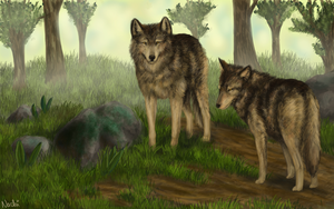 Wolves for O-JUMI by Nachiii