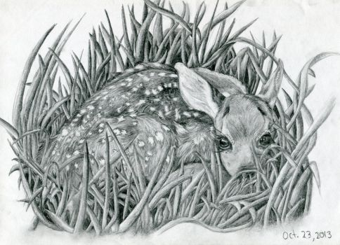 Caught in the Grass by Roseyred-1