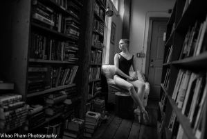 New England Bookshop II by HowNowVihao