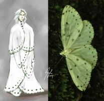 Moth Series 5- The Frail by SineSquared