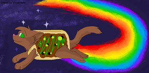 meh Nyan Cat by americacat1