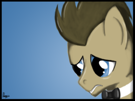 Doctor Whooves by DragmodNotloc